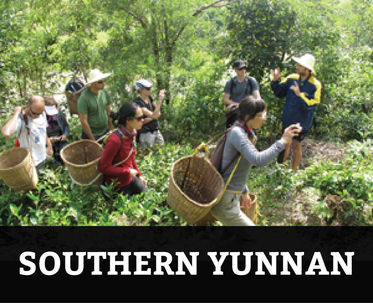 B4_southern yunnan