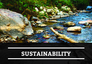 Find Out More_Sustainability