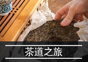 '茶道之旅_Tea Journeys