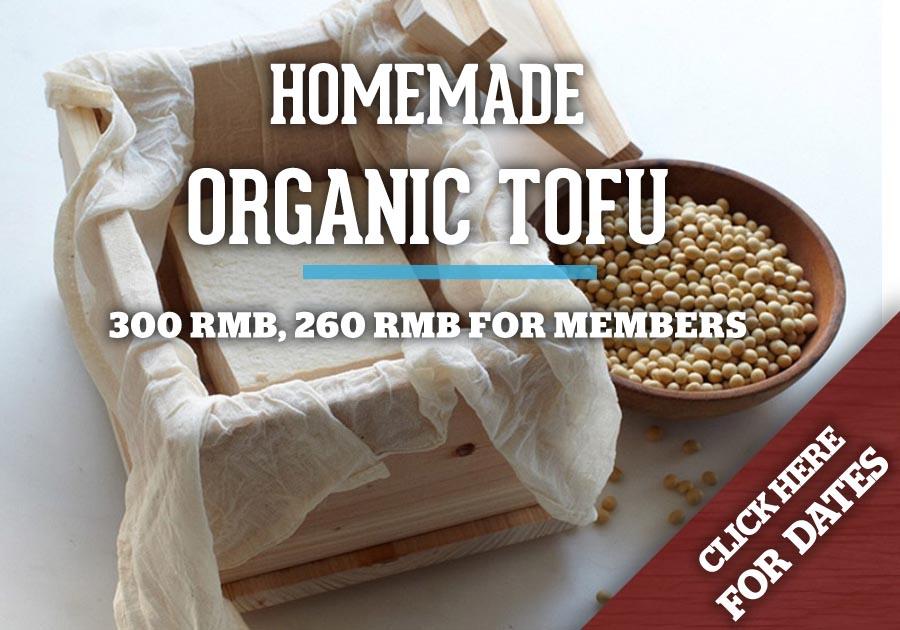 Tofu Flyer
