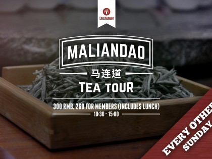 Maliandao Tea Tour